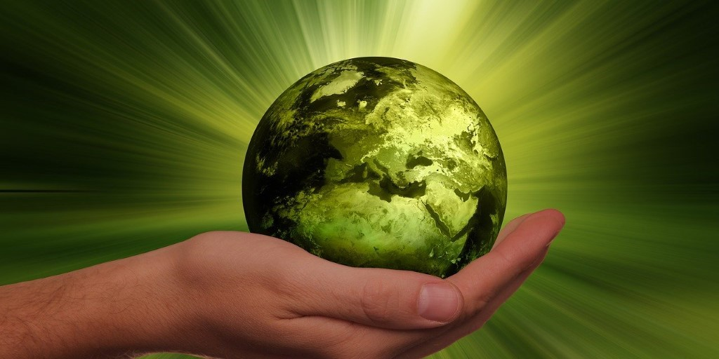 A picture containing a hand holding a green globe.