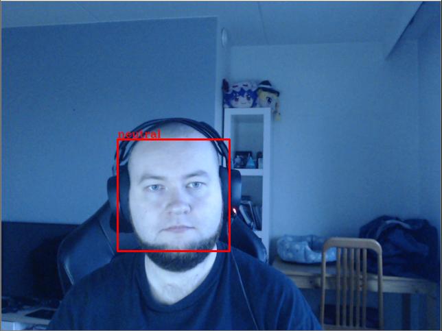 Kuva 2. Ihminen, jonka kasvoja kehystää laatikko. Laatikon yläkulmassa sana Neutral