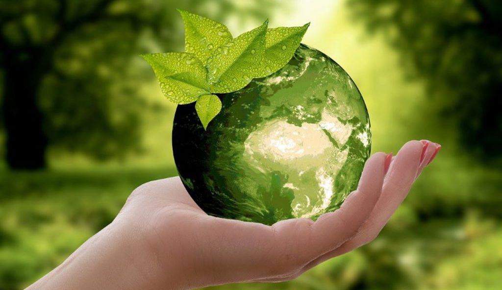 Kuvituskuva. Vihreä maapallo kämmenellä.