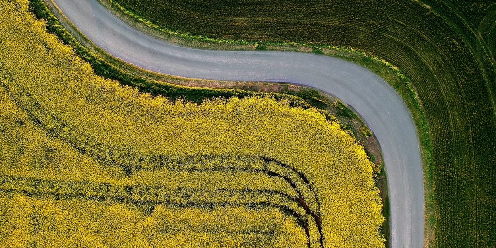 Yellow and green fields and a meandering road from a bird perspective.