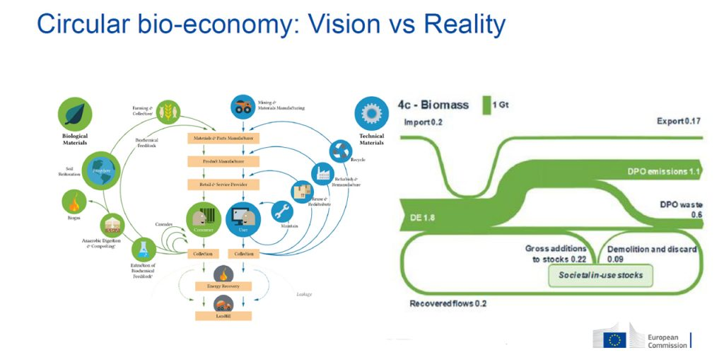 visual overview of material flows in circular economy, on the right, and biomass in Europe flow chart on the right.