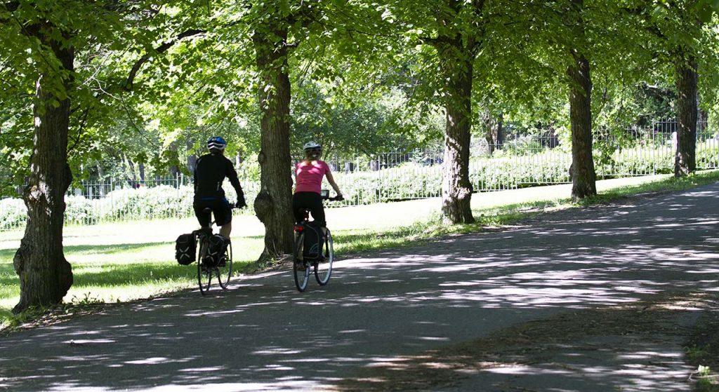 [Alt-teksti: Kaksi pyöräilijää ajaa kesäistä puistotietä, jonka varrella on suuria lehtipuita.]