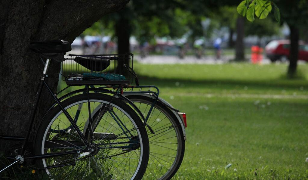 [Alt-teksti: Kaksi pysäköityä pyörää kaupunkipuistossa.]